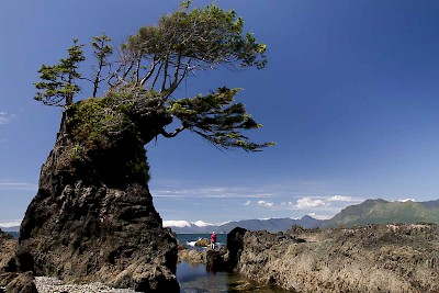 Discover spectacular west coast landscapes while hiking the Nootka or Tatchu Trail on Vancouver Island's west coast.