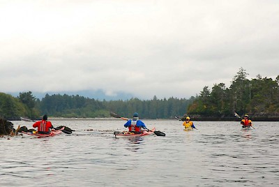 Kayakers enjoy wet launching at select remote locations in Nootka Sound or Kyuquot Sound from the deck of the MV Uchuck III